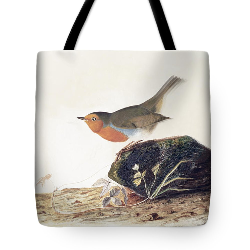 A Robin Perched On A Mossy Stone By John James Audubon (1785-1851) Tote Bag featuring the painting A Robin Perched On A Mossy Stone by John James Audubon