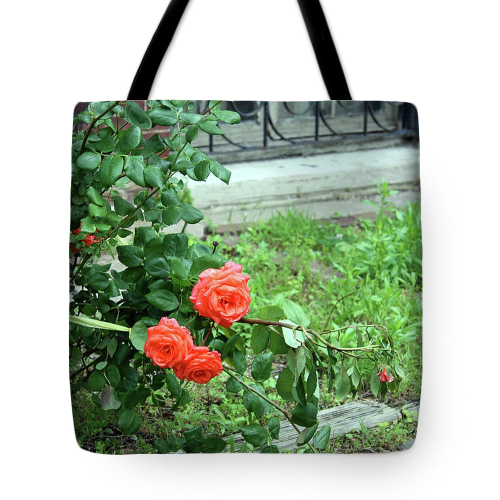 Rose Tote Bag featuring the photograph A Rose Is Down by Cora Wandel