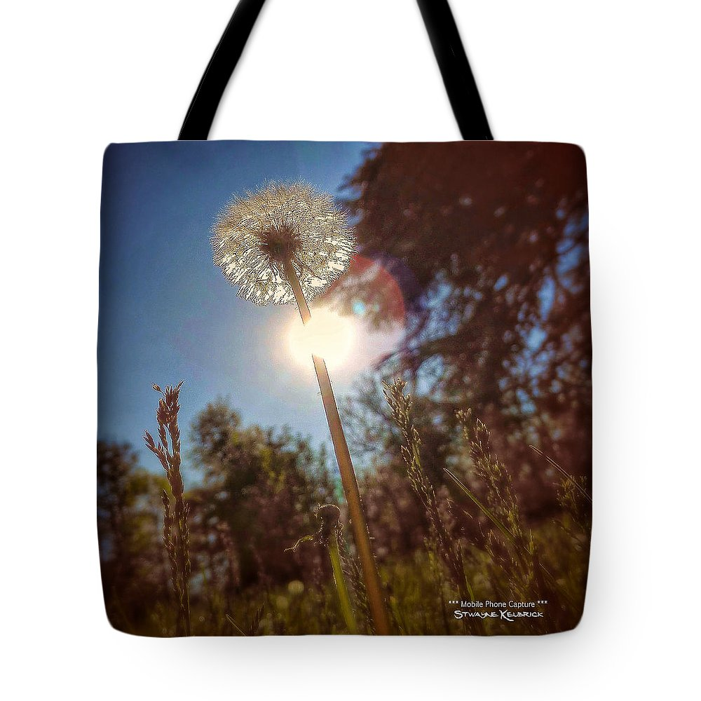Flowers Tote Bag featuring the photograph A Shiny Flower Day by Stwayne Keubrick