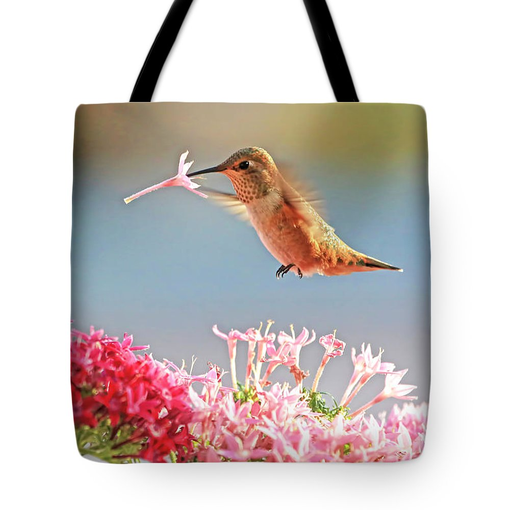 Selasphorus Photographs Tote Bags