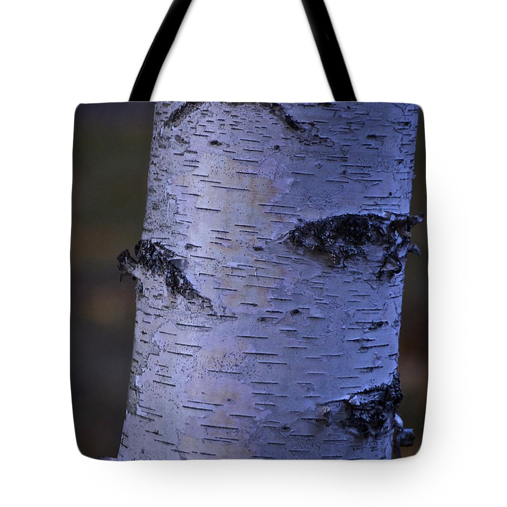 Tree Tote Bag featuring the photograph A Solitary Life by Faith Harron Boudreau