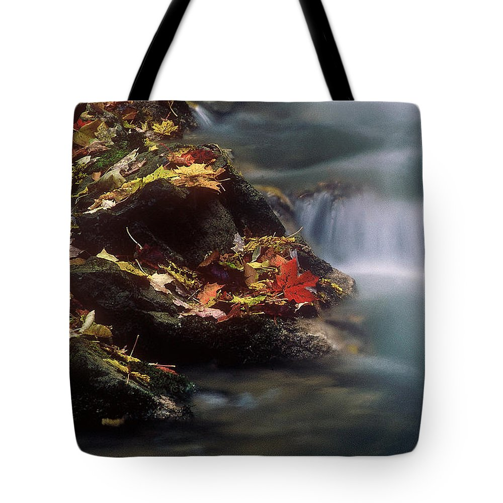 River Tote Bag featuring the photograph A Special Place by D'Arcy Evans