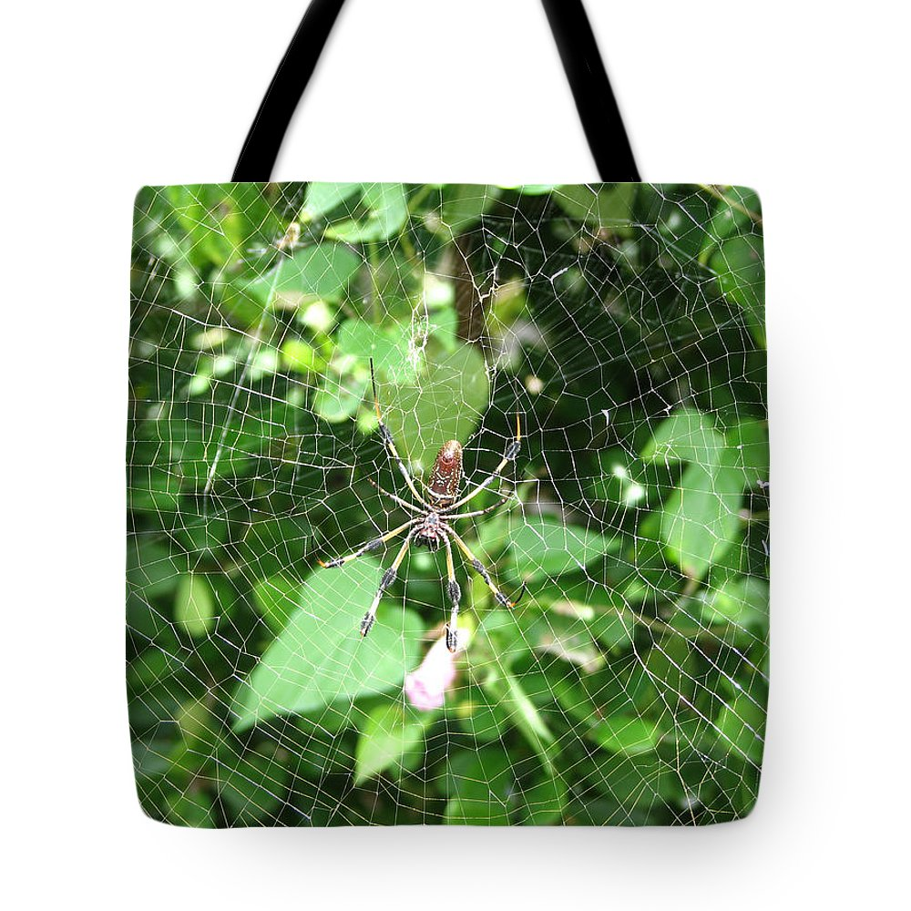 Spider Tote Bag featuring the photograph A Spider Web by Stacey May