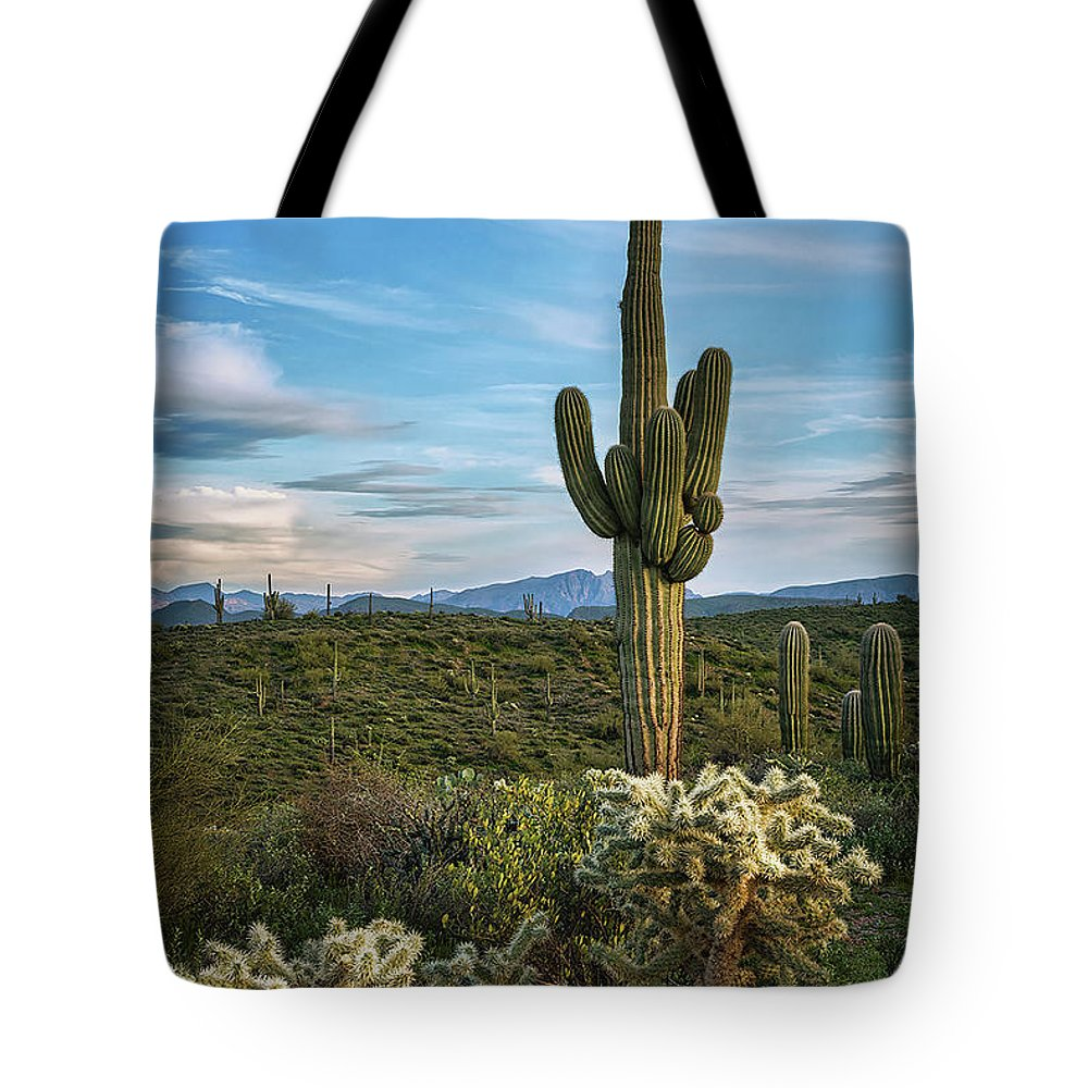 Saguaro Cactus Tote Bag featuring the photograph A Spring Evening In The Sonoran by Saija Lehtonen