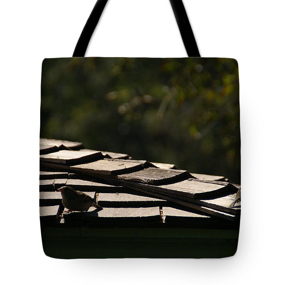 Sparrow Tote Bag featuring the photograph A Summers Day by Linda Shafer