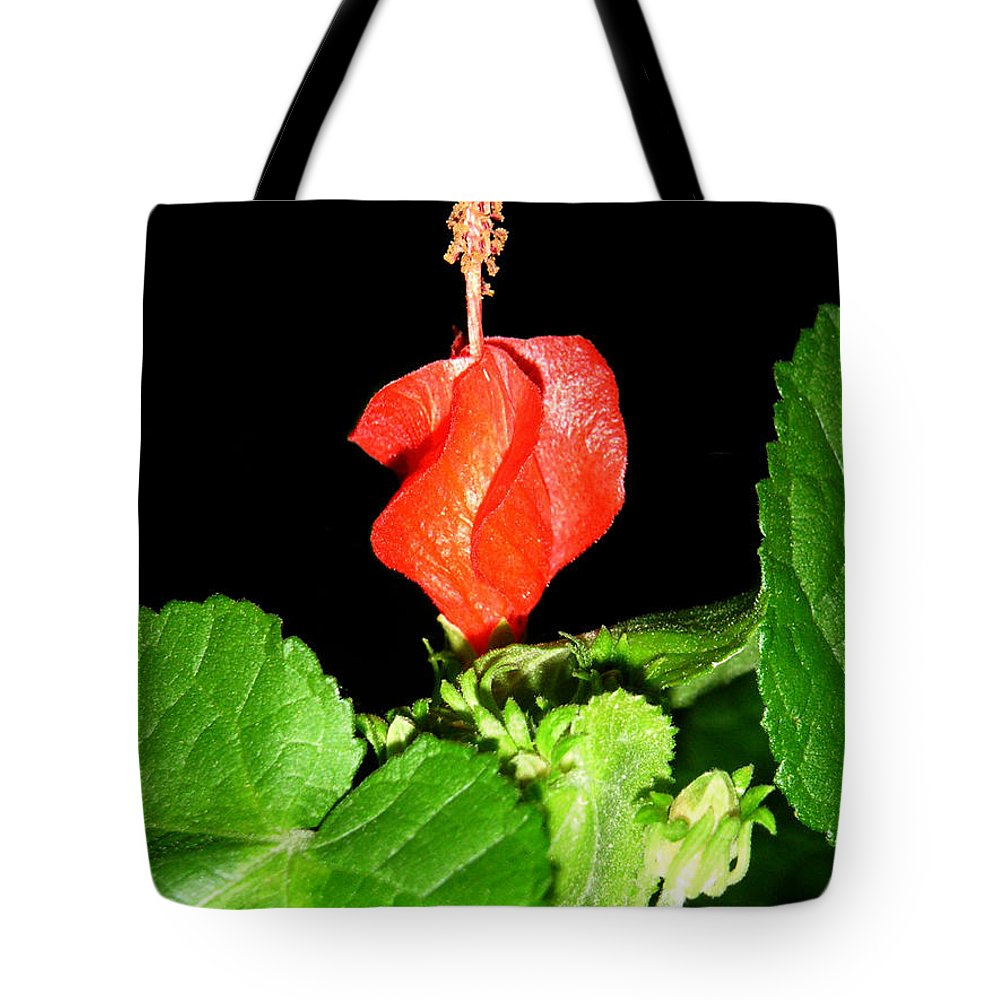 Nature Tote Bag featuring the photograph A Swirl Of Red by Lucyna A M Green