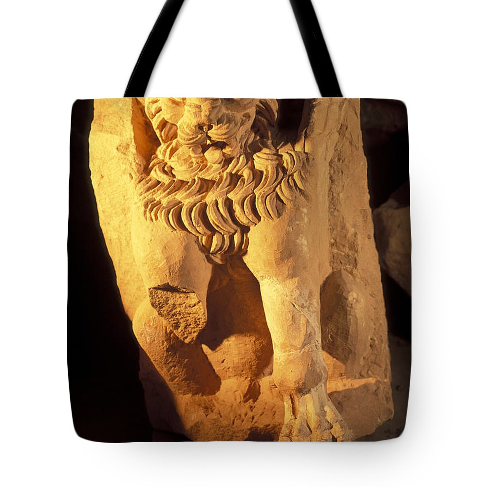 Petra Tote Bag featuring the photograph A Temple Winged Lion In The Petra by Richard Nowitz
