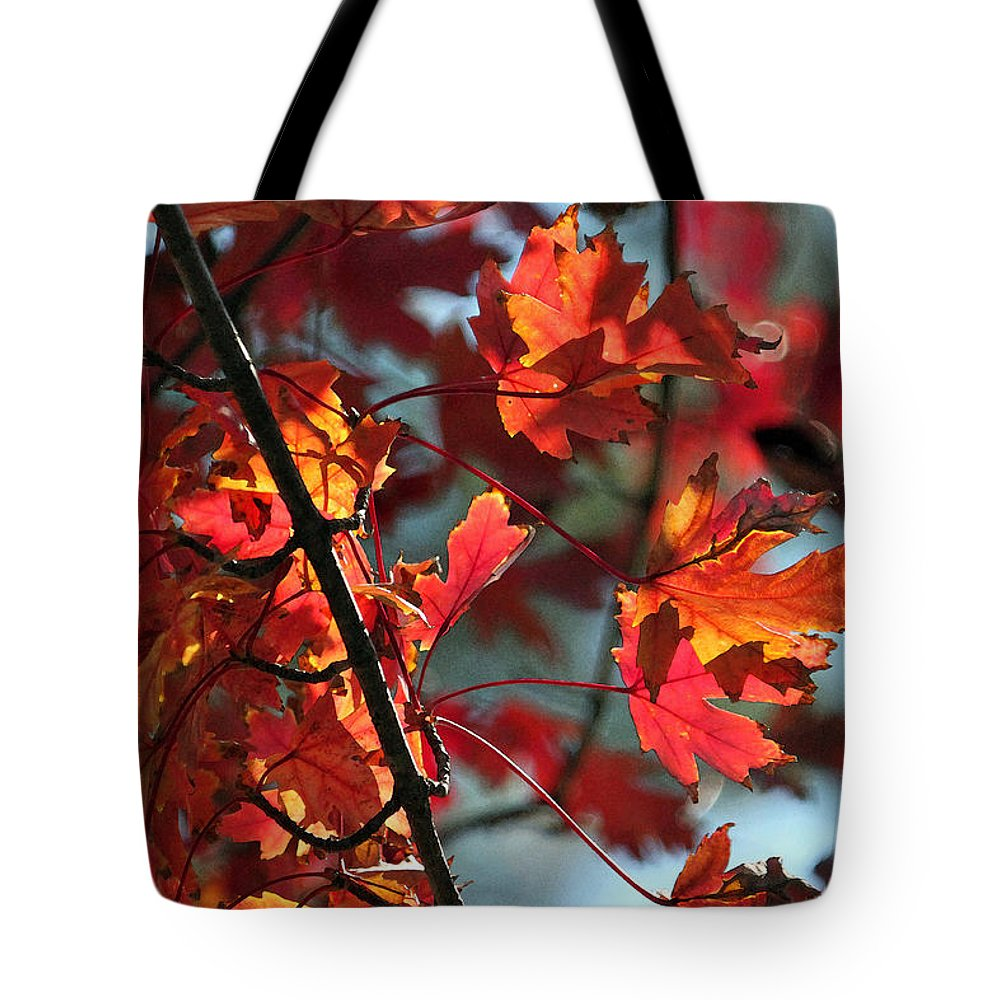 Leaf Tote Bag featuring the photograph A Time For Every Season IIi In Watercolor by Suzanne Gaff
