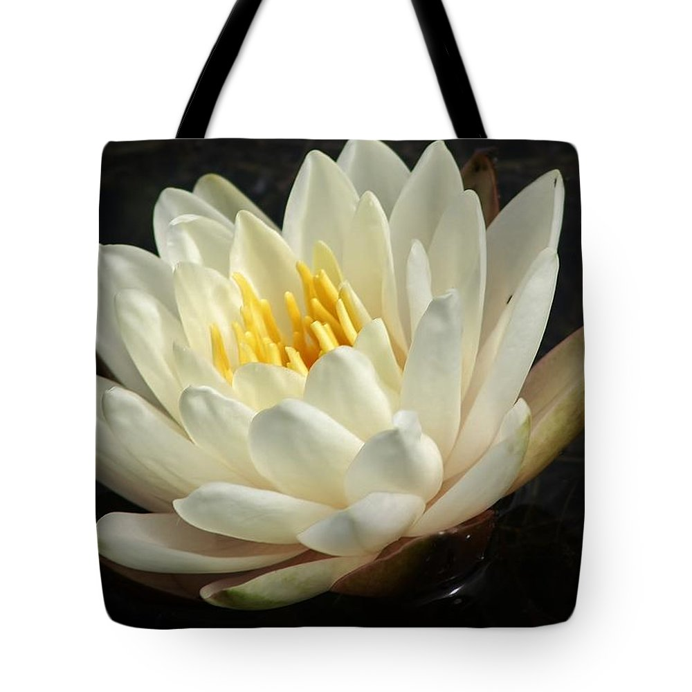 Nature Tote Bag featuring the photograph A Touch Of Elegance On The Pond by Bruce Bley