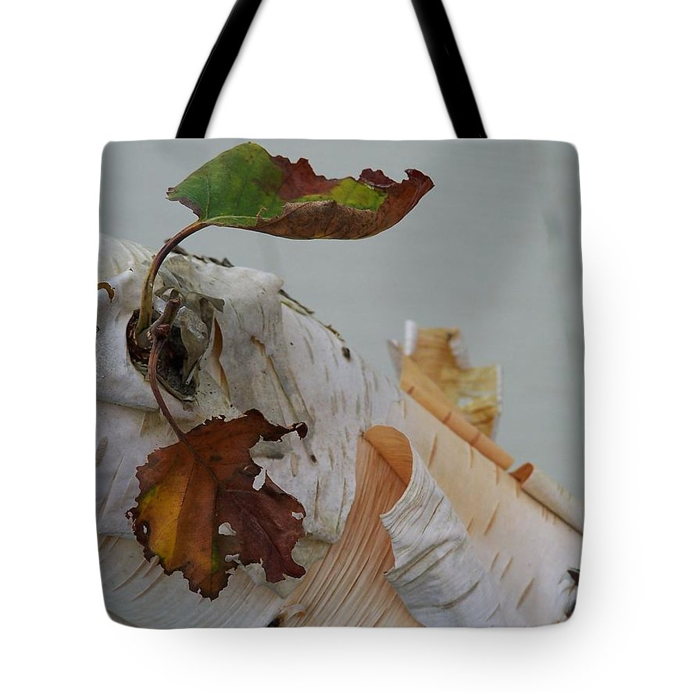 Birch Tote Bag featuring the photograph A Touch Of Fall by Gale Cochran-Smith