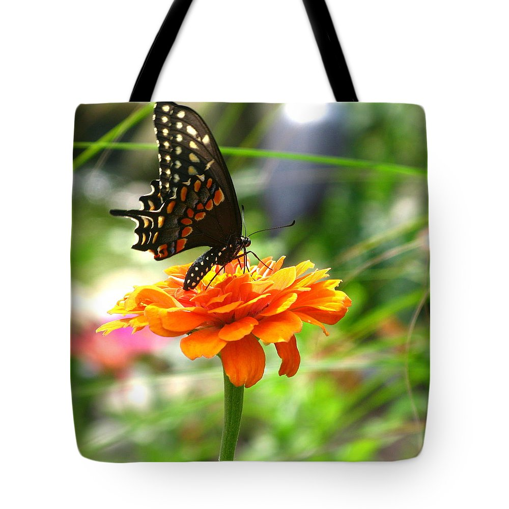 Summer Tote Bag featuring the photograph A Touch Of Summer's End by Brittany Horton