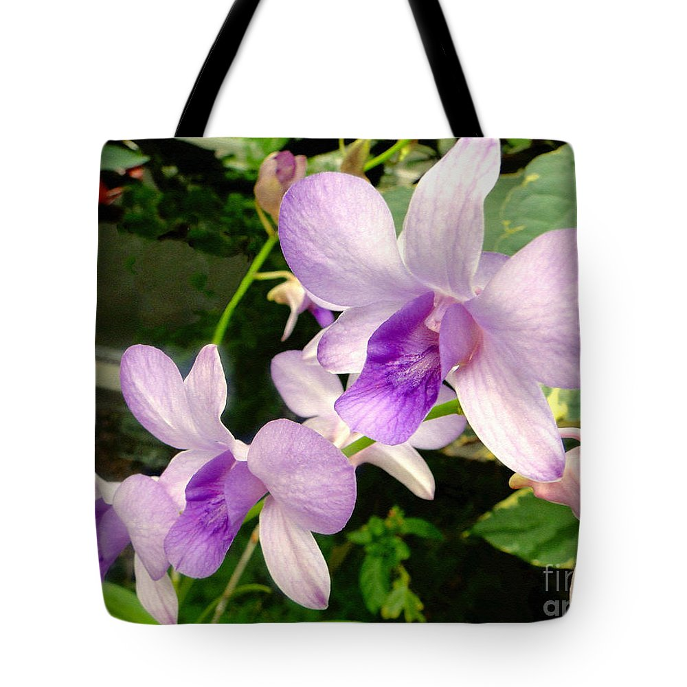 Orchid Tote Bag featuring the photograph A Trio Of Pale Purple Orchids by Sue Melvin