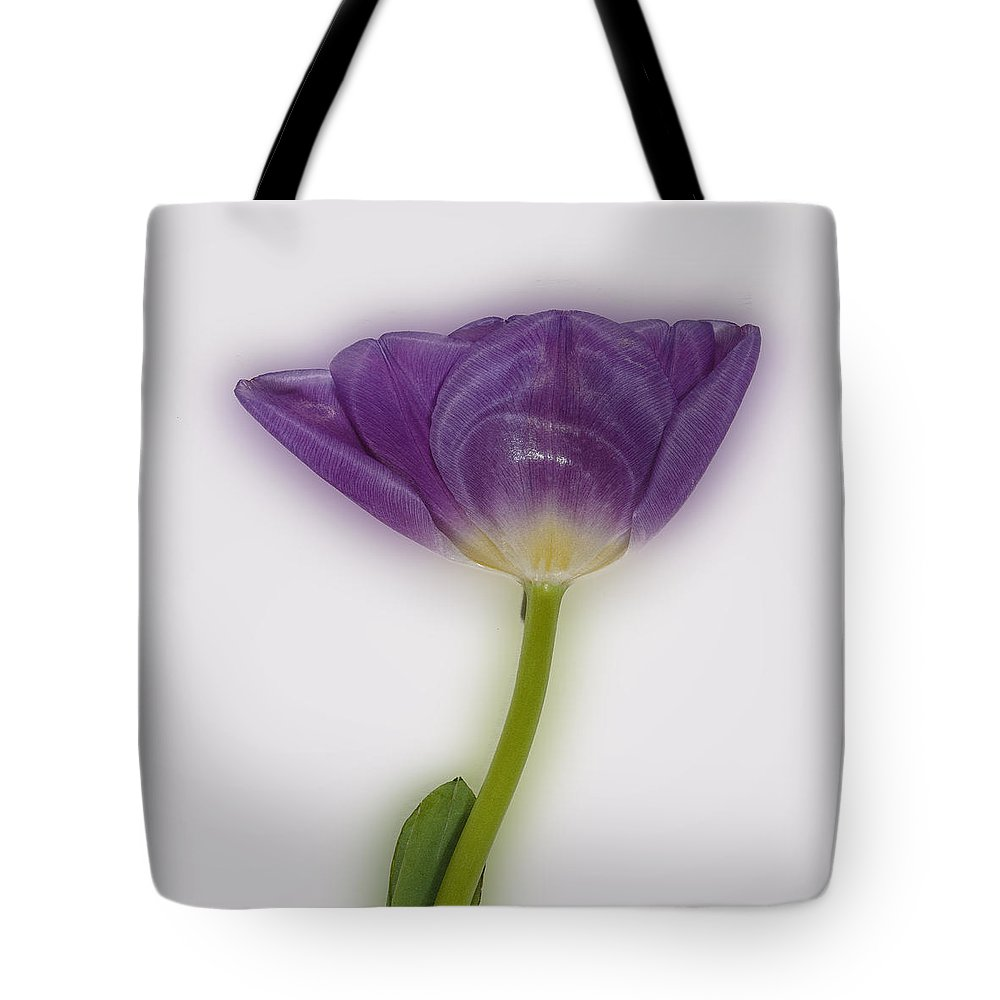 Tulip Tote Bag featuring the photograph A Tulip Alone by David Stone
