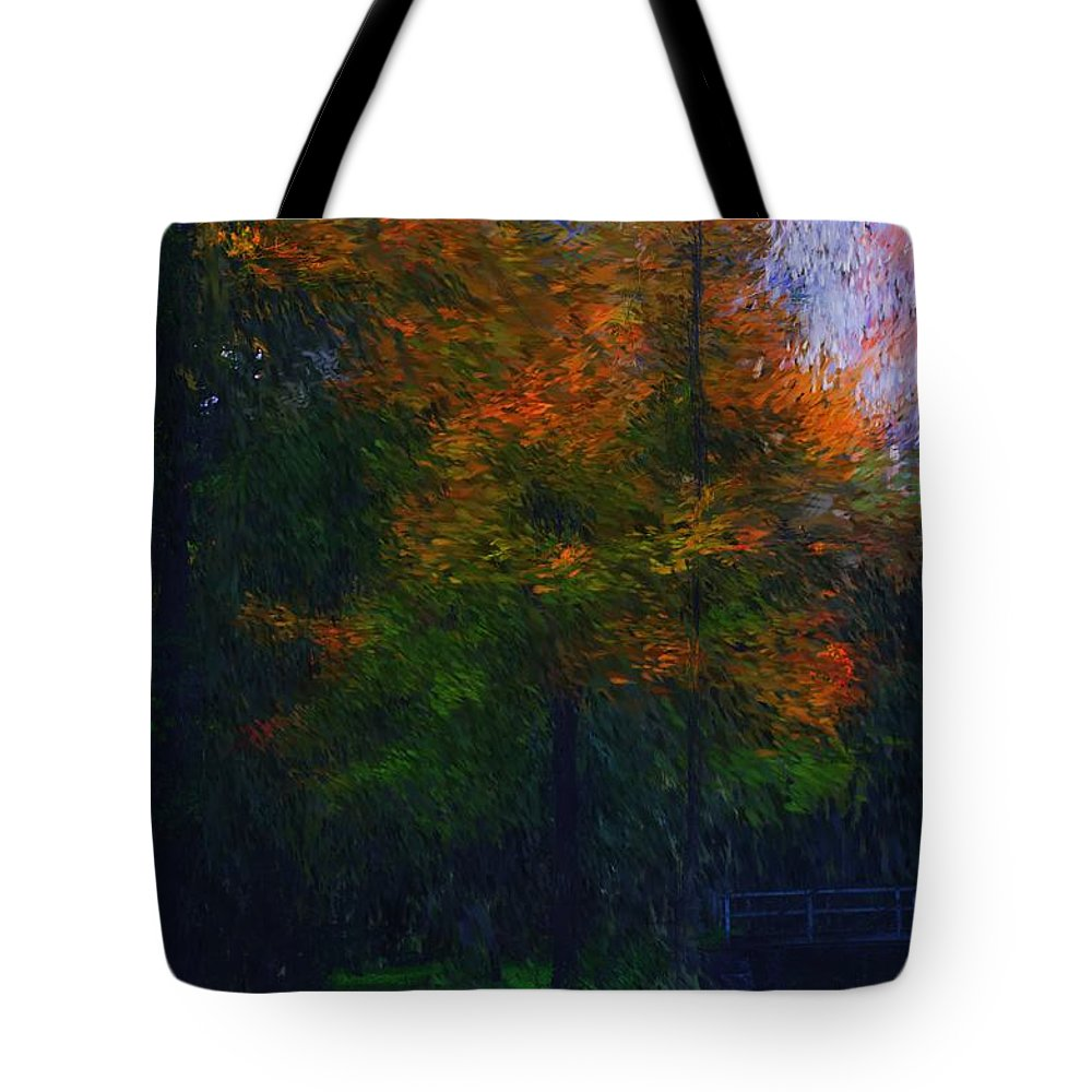 Autumn Tote Bag featuring the photograph A Walk In The Park by David Lane