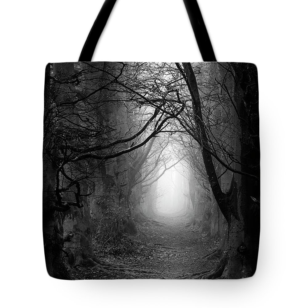 Foggy Tote Bag featuring the photograph A Walk In The Woods by Simon Garratt