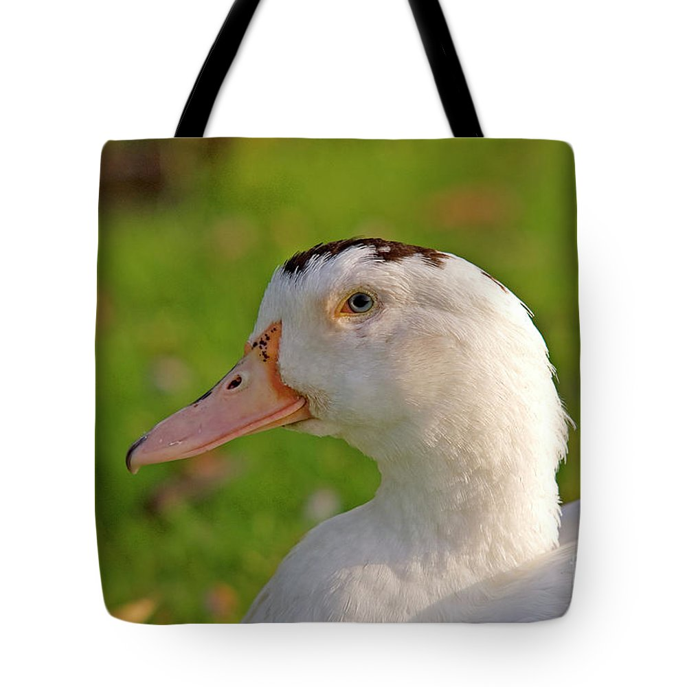 Psi Tote Bag featuring the photograph A White Duck, Side View by Ofer Zilberstein