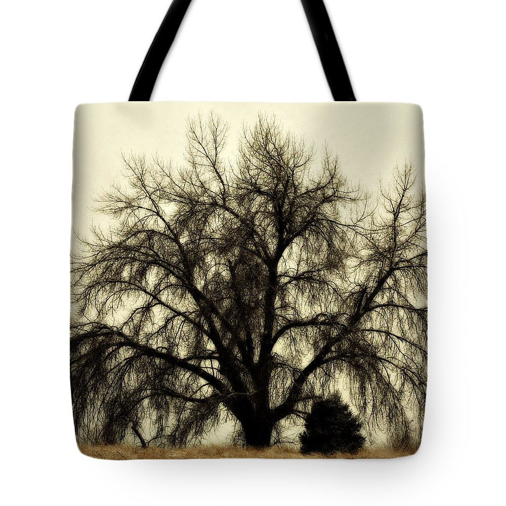 Tree Tote Bag featuring the photograph A Winter's Day by Marilyn Hunt