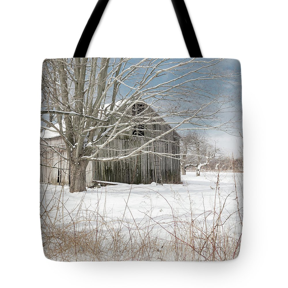 Square Tote Bag featuring the photograph A Winters Day Square by Bill Wakeley