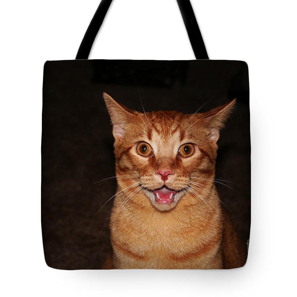 Buddy Tote Bag featuring the photograph Aaaaaahhhhhhhhhh by Jamie Lynn
