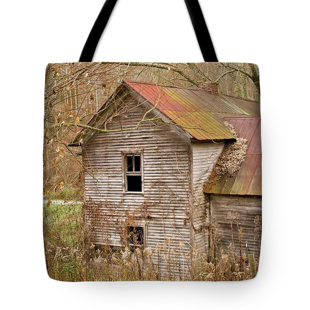 Abandoned Tote Bag featuring the photograph Abandoned House With Colorful Roof by Douglas Barnett