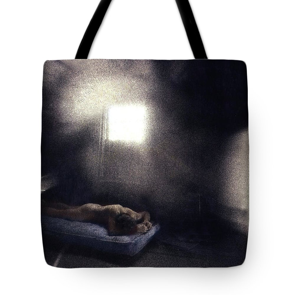 Male Tote Bag featuring the photograph Abandoned Nude by Wayne King