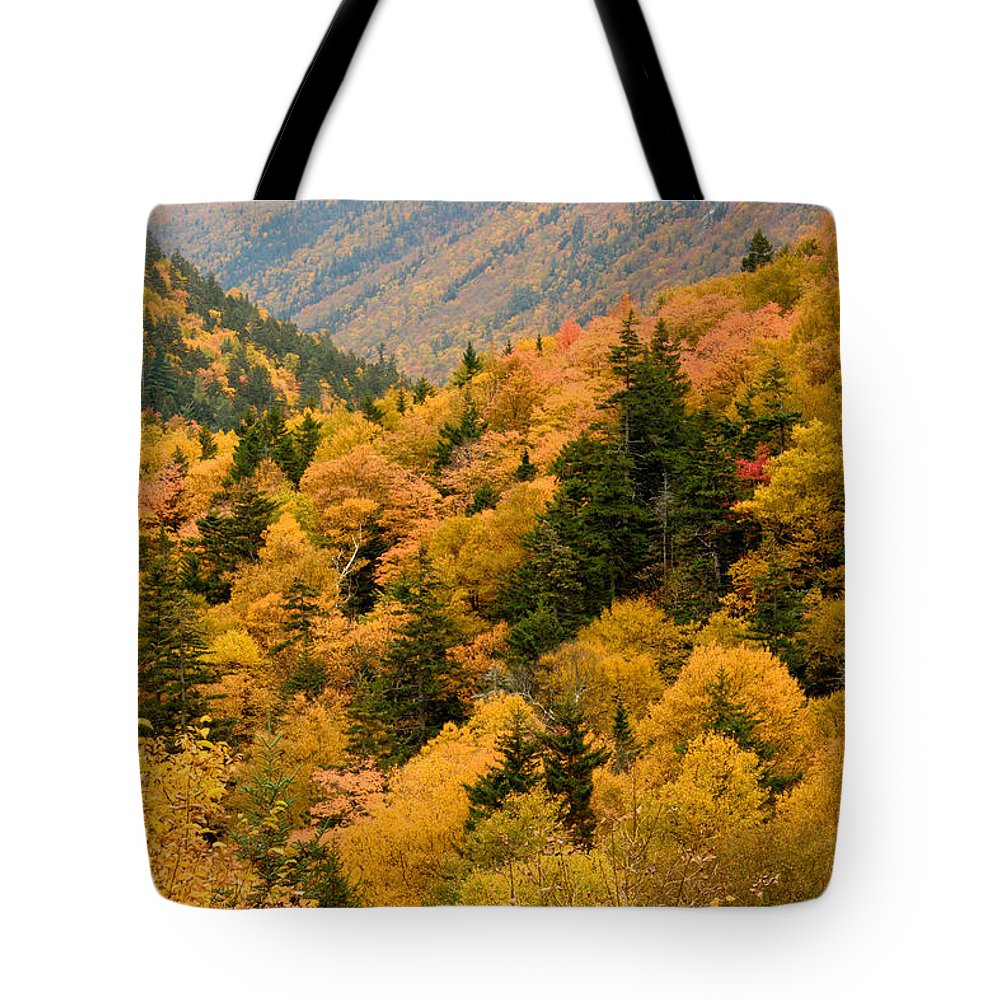 Autumn Tote Bag featuring the photograph Ablaze With Autumn Glory by Nancy De Flon