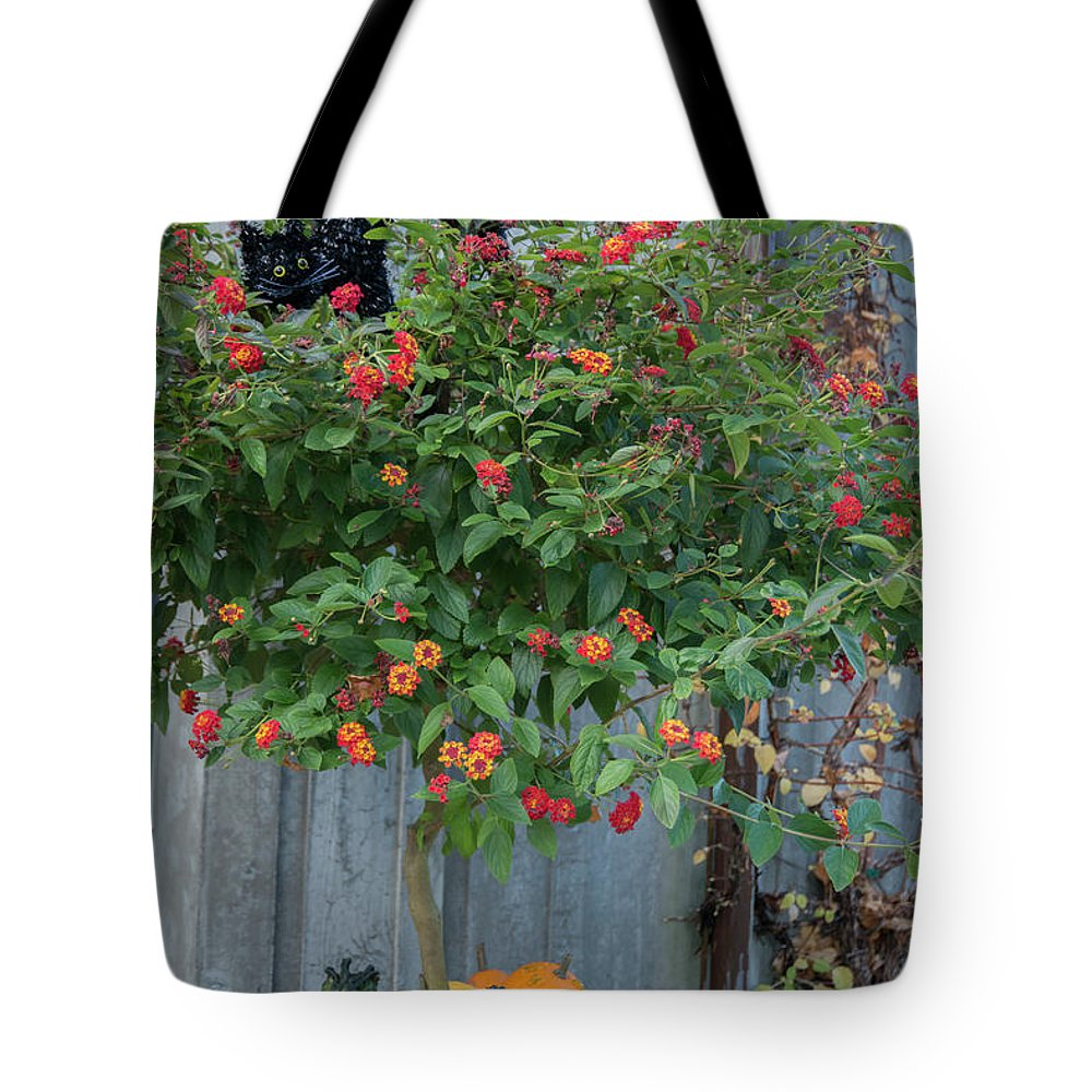 Outdoor Tote Bag featuring the photograph About Autumn 2. by Andrew Kim
