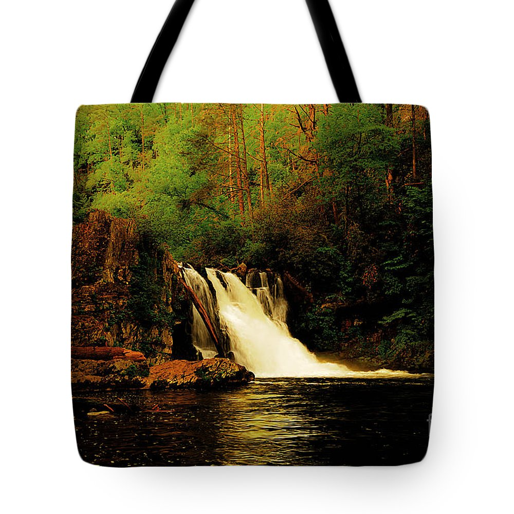 Abrams Falls Tote Bag featuring the photograph Abrams Falls by Tress Chapin