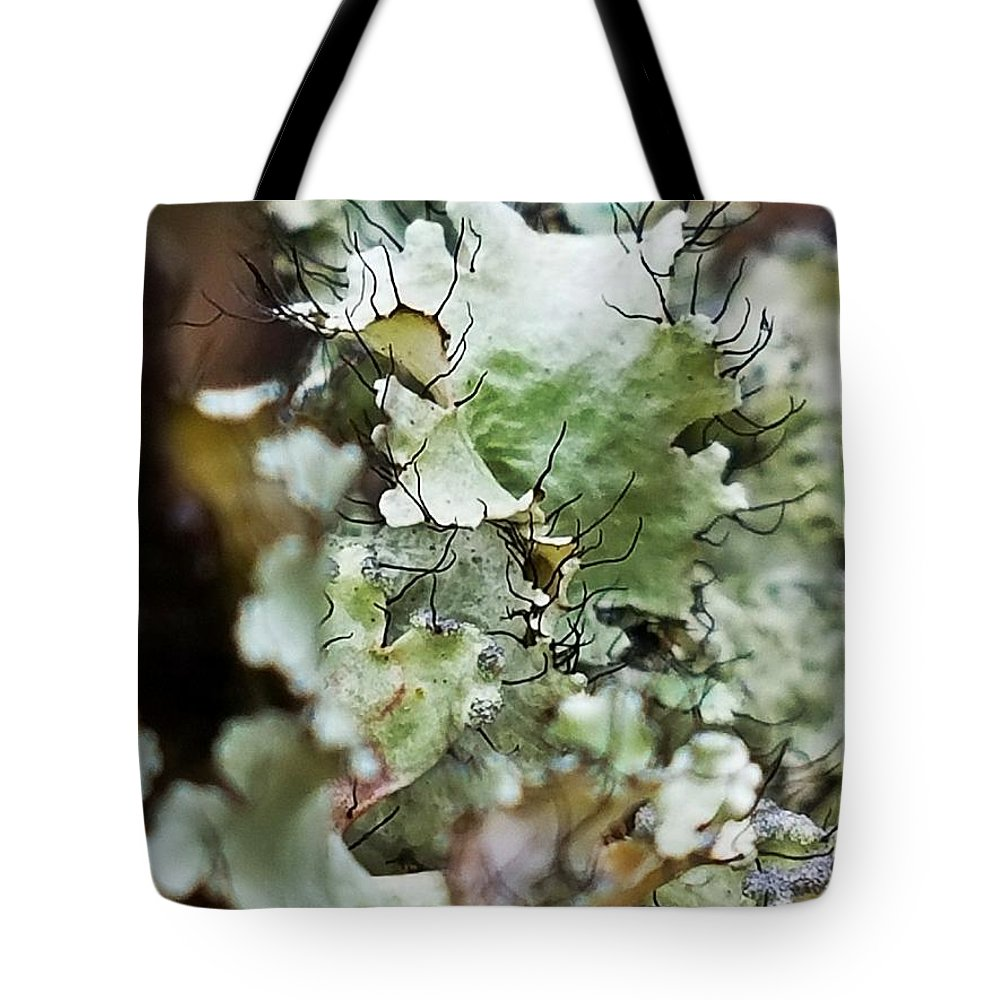Abstract Flora 1 Tote Bag featuring the photograph Abstract Flora 1 by Maria Urso