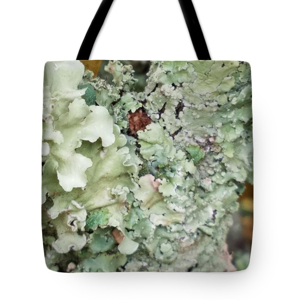 Abstract Floral 2 Tote Bag featuring the photograph Abstract Floral 2 by Maria Urso