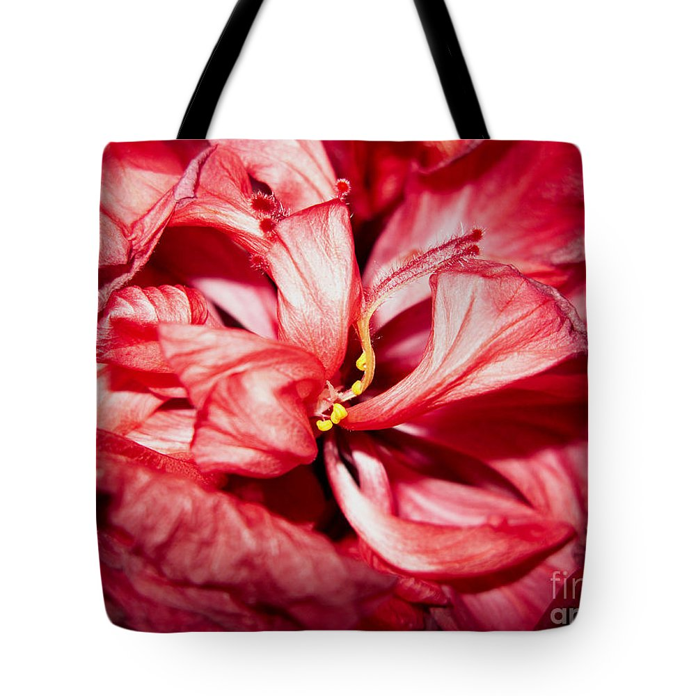 Abstract Tote Bag featuring the photograph Abstract Flower by Tony Cordoza