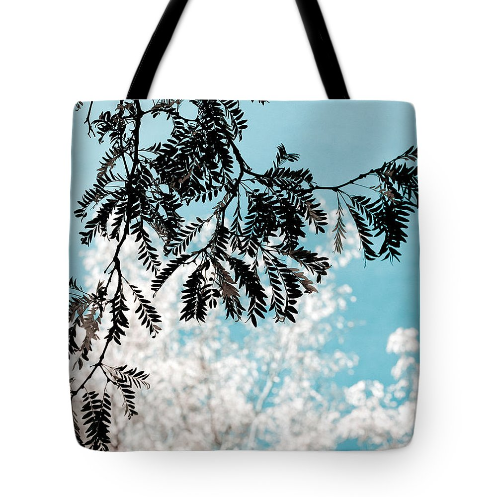 Tree Tote Bag featuring the photograph Abstract Locust by Marilyn Hunt