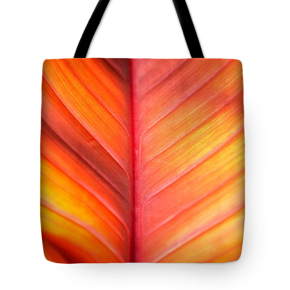 Pattern Tote Bag featuring the photograph Abstract by Tony Cordoza
