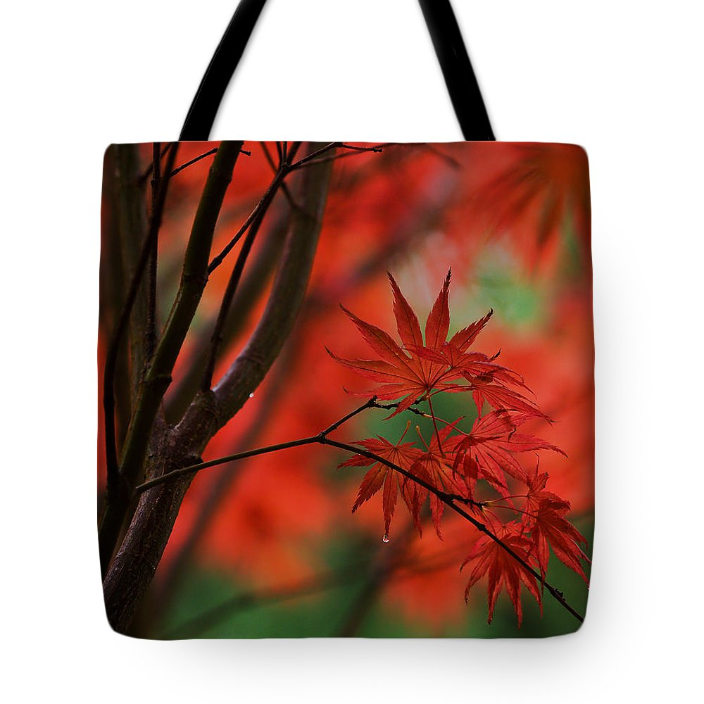 Acer Tote Bag featuring the photograph Acer Fanfare by Mike Reid