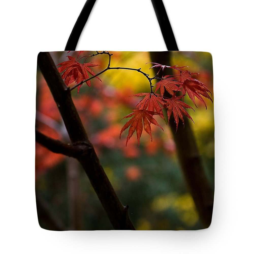 Acer Tote Bag featuring the photograph Acer Finish by Mike Reid
