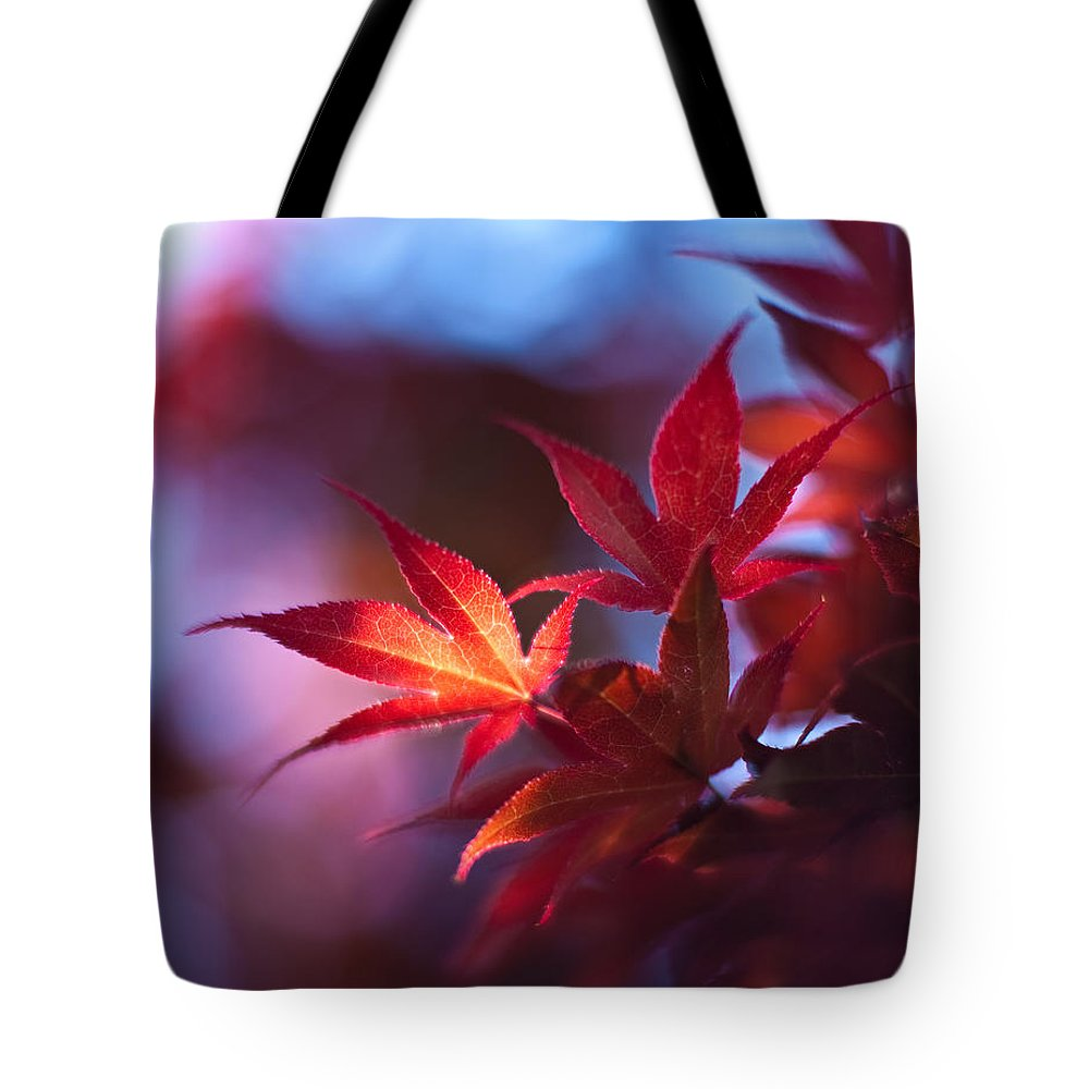 Acer Tote Bag featuring the photograph Acer Kaleidoscope by Mike Reid