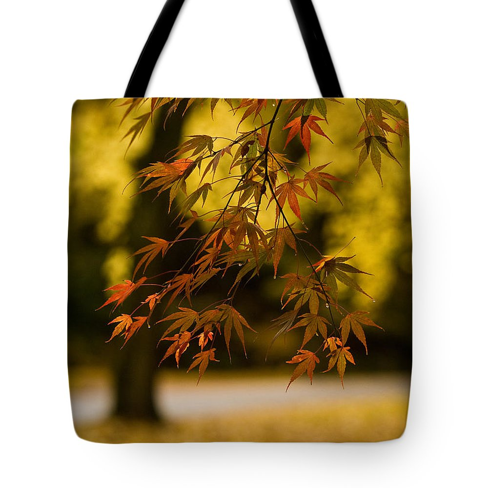 Acer Tote Bag featuring the photograph Acers Turning by Mike Reid