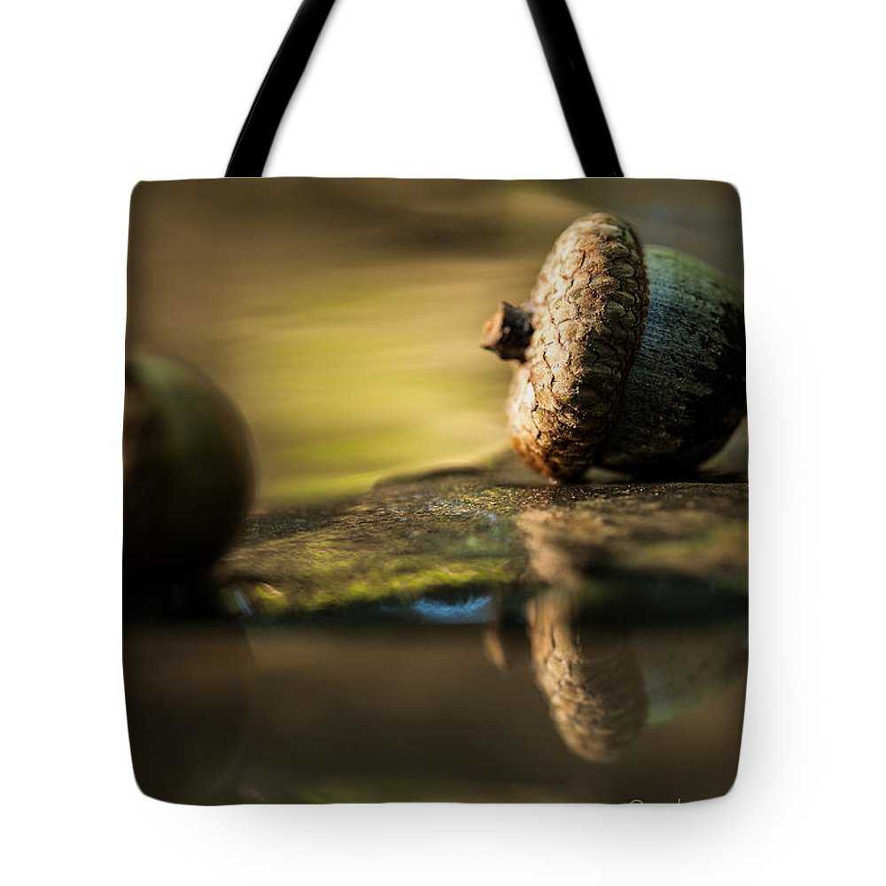 Macro Tote Bag featuring the photograph Acorns by Robert Shields