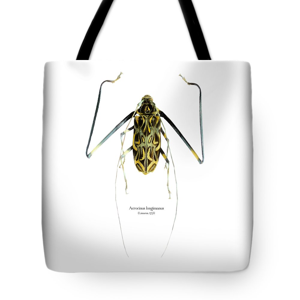 Nature Tote Bag featuring the digital art Acrocinus II by Geronimo Martin Alonso