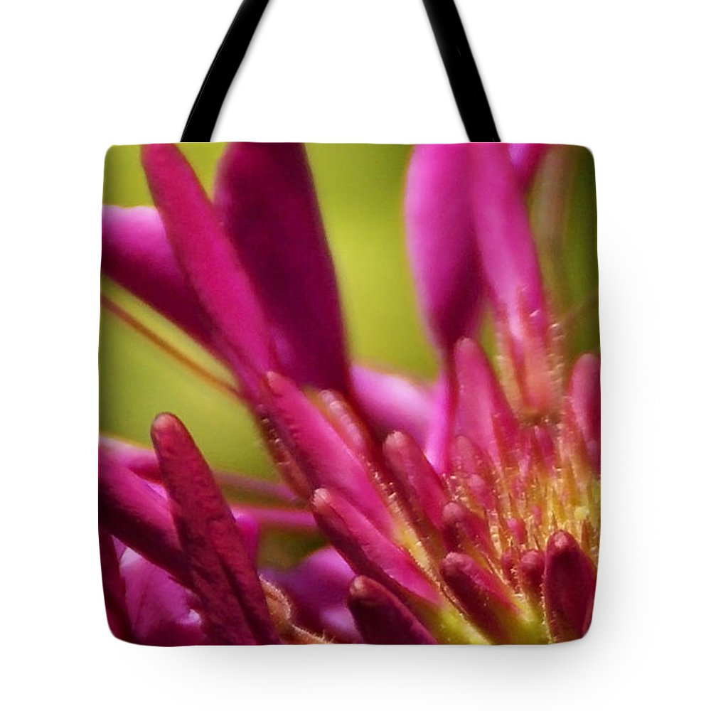 Flower Tote Bag featuring the photograph Actiniaria by Linda Shafer