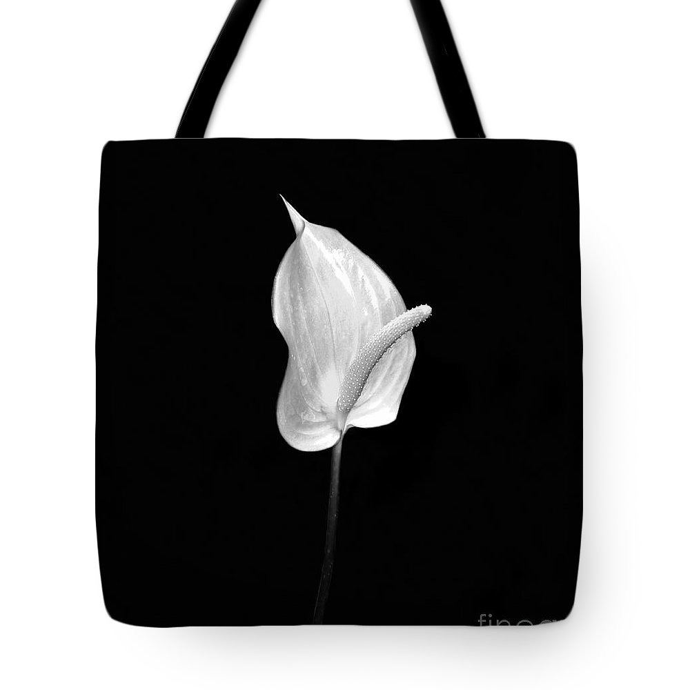 Adam And Eve Tote Bag featuring the photograph Adam And Eve by David Lee Thompson