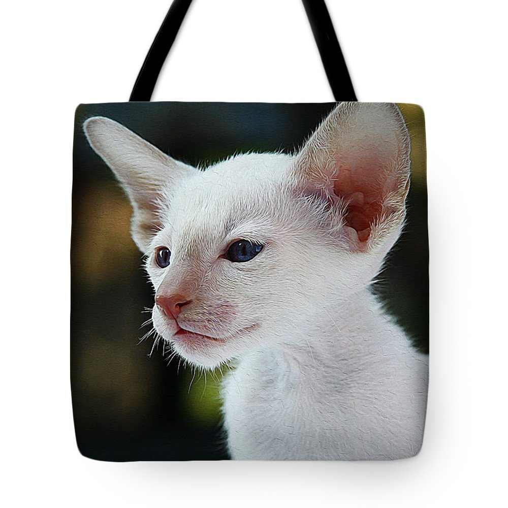 Cat Art Tote Bag featuring the painting Adorable Siamese Cat by Queso Espinosa