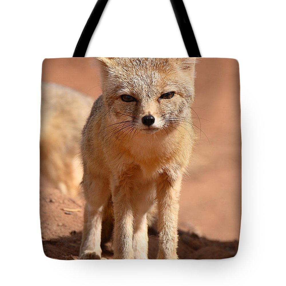 Fox Tote Bag featuring the photograph Adult Kit Fox Ears And All by Max Allen