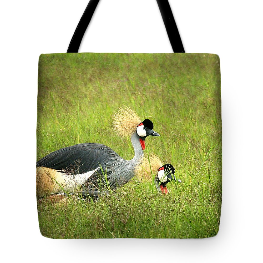 Crane Tote Bag featuring the photograph African Gray Crown Crane by Joseph G Holland