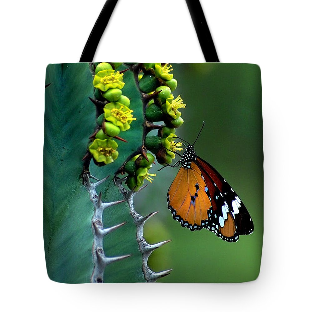 African Monarch Tote Bag featuring the photograph African Monarch On Cactus by Robert Lacy