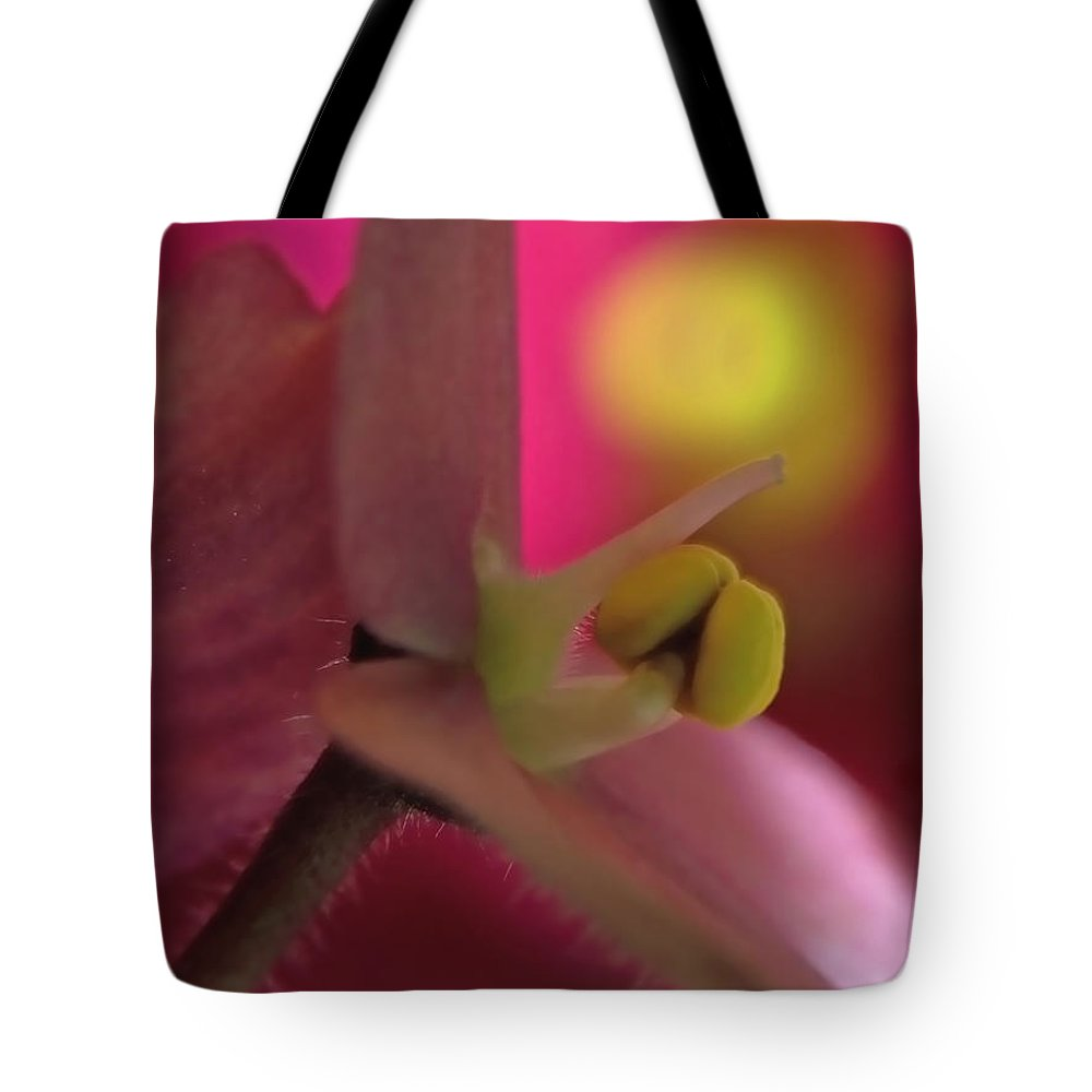 Violet Tote Bag featuring the photograph African Violet by Lauren Radke