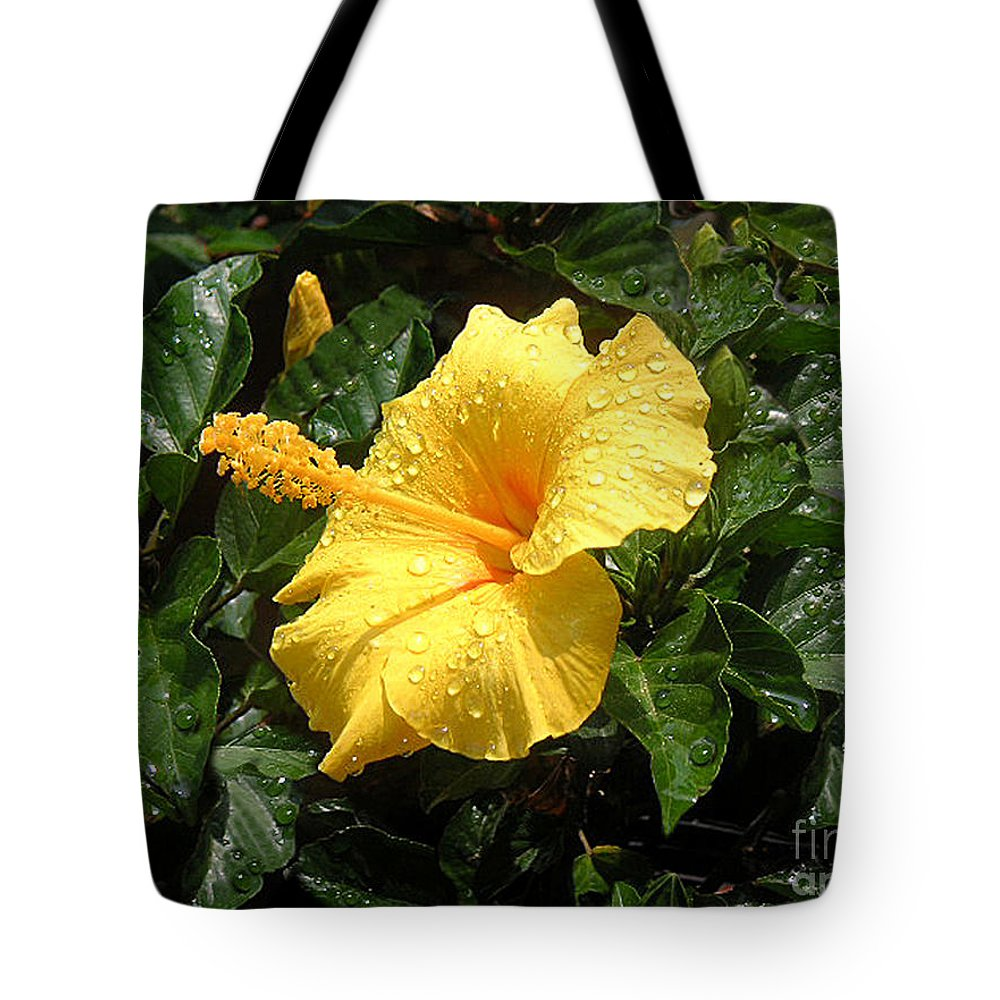 Nature Tote Bag featuring the photograph After The Rain by Lucyna A M Green
