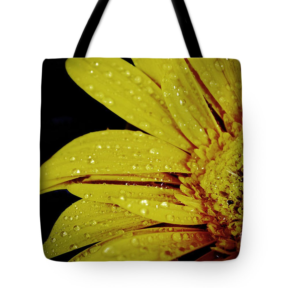 Rain At Night Tote Bag featuring the photograph Afternoon Delight by Karry Degruise