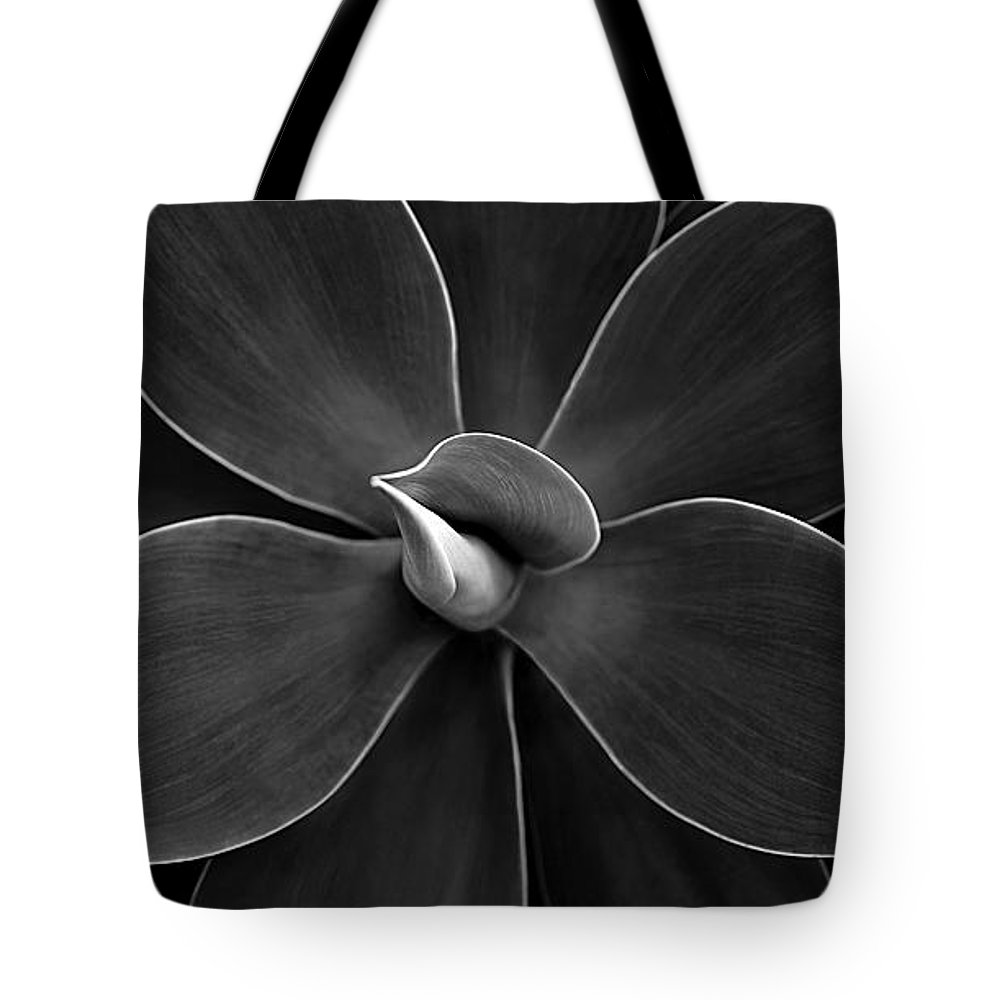 Agave Tote Bag featuring the photograph Agave Leaves Detail by Marilyn Hunt