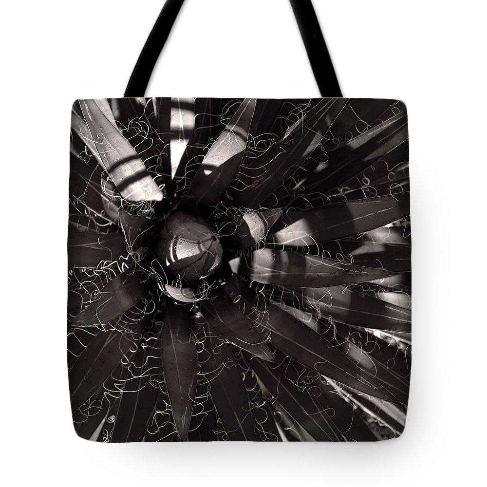 Agave Tote Bag featuring the photograph Agave by Steve Bisgrove